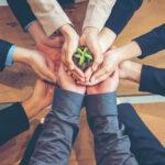 Projektmanagement Nachhaltigkeit