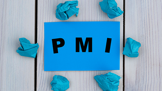 Project Management Institute PMI