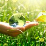 Projektmanagement Umweltschutz